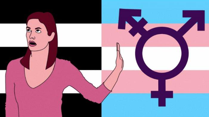 Qué es el feminismo TERF, el feminismo transfóbico